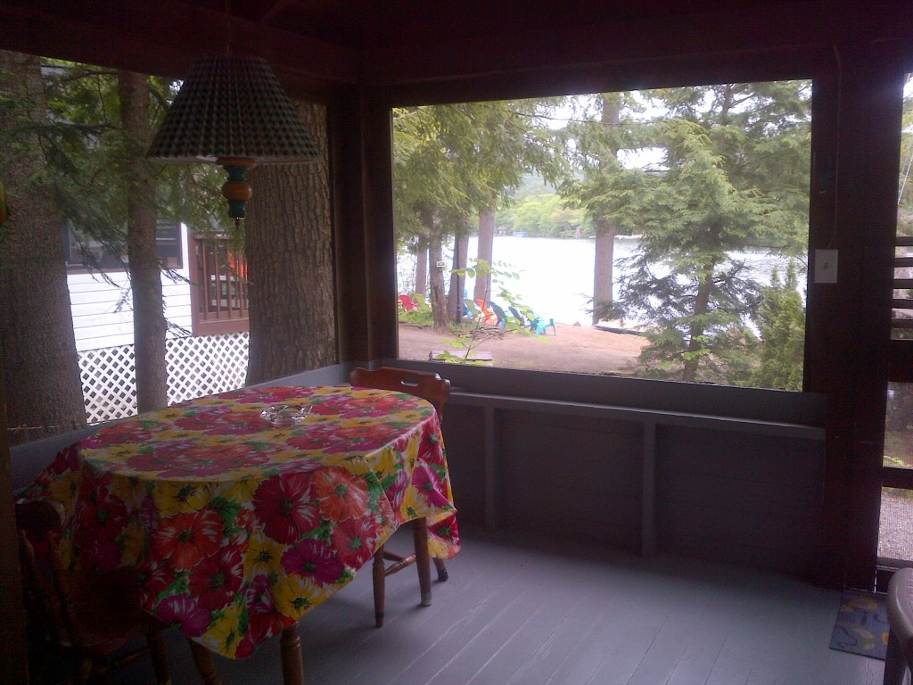 Pic of lake from deck in cottage 4